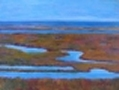 Salt Marsh Vista